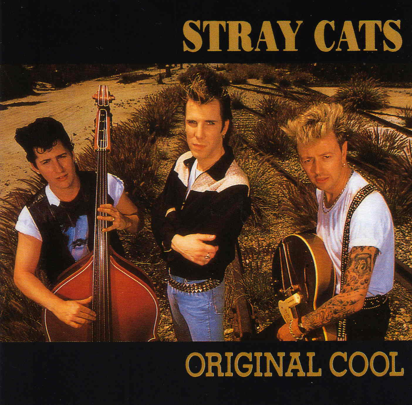 The Stray Cats Mystery Train
